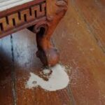 How to remove termites from furniture
